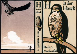 final H is for hawk cover