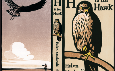 H Is For Hawk… And Heffers