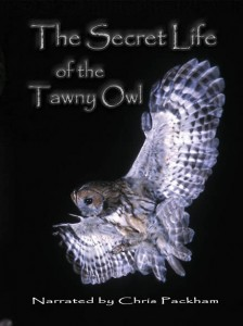 The Secret Life of The Tawny Owl_Chris Packham_David Cobham